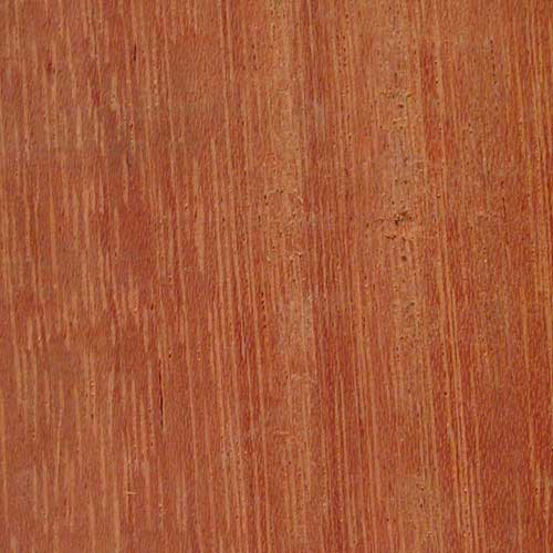 Greenheart timber related keywords suggestions for Purple heart flooring